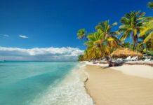 Ahora en VIVO: Rueda de prensa para presentar a República Dominicana como país invitado y socio de la FITUR 2022.